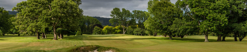 Royal-Wellington-Hole-9-banner-ds.jpg