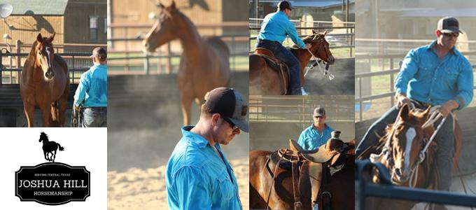 Joshua hill horsemanship