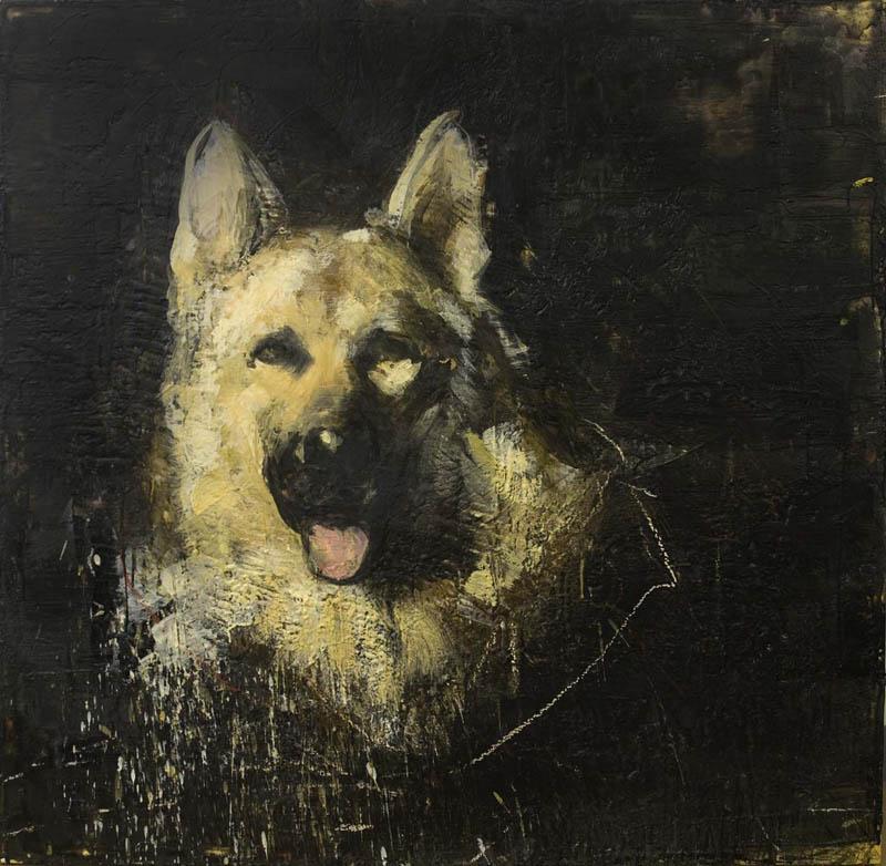 German Sheppard