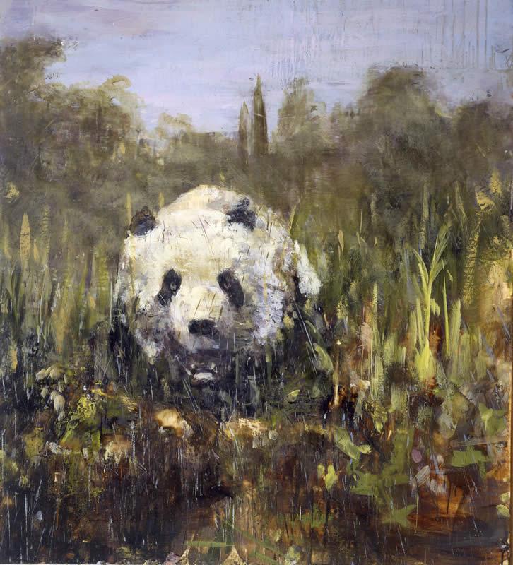 Panda Bear: Callisto in Tuscany