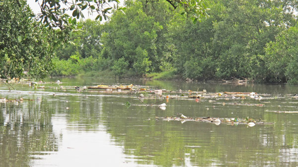 Plastics in River