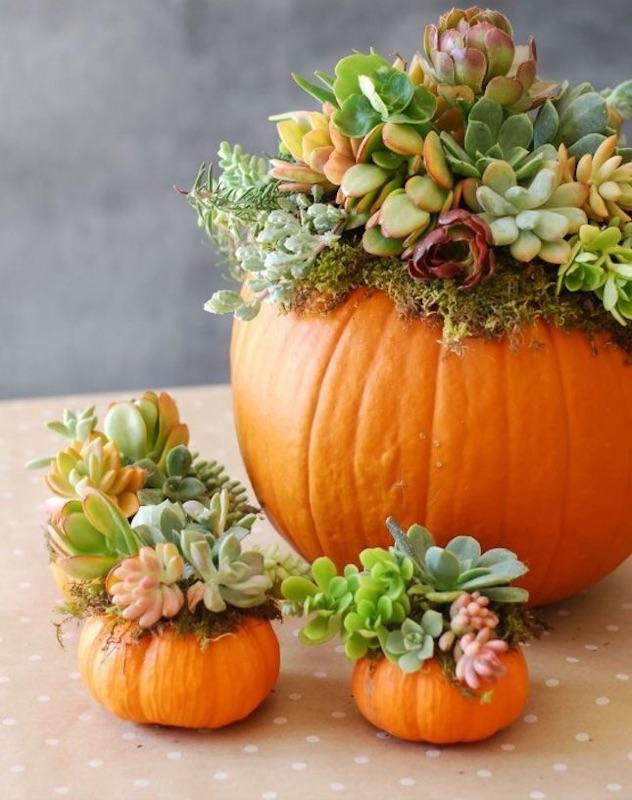 Fall DIY  (4).jpg