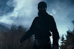 ninjakillings.jpg
