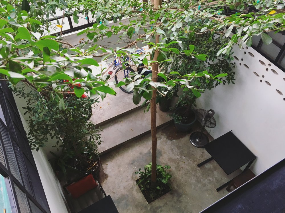 TINI's  cosy  front garden