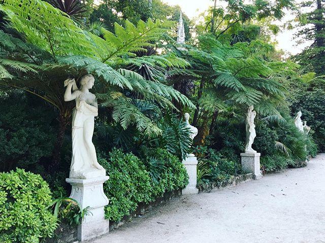 #gardensofsintra #gardendesign 🌿🍃