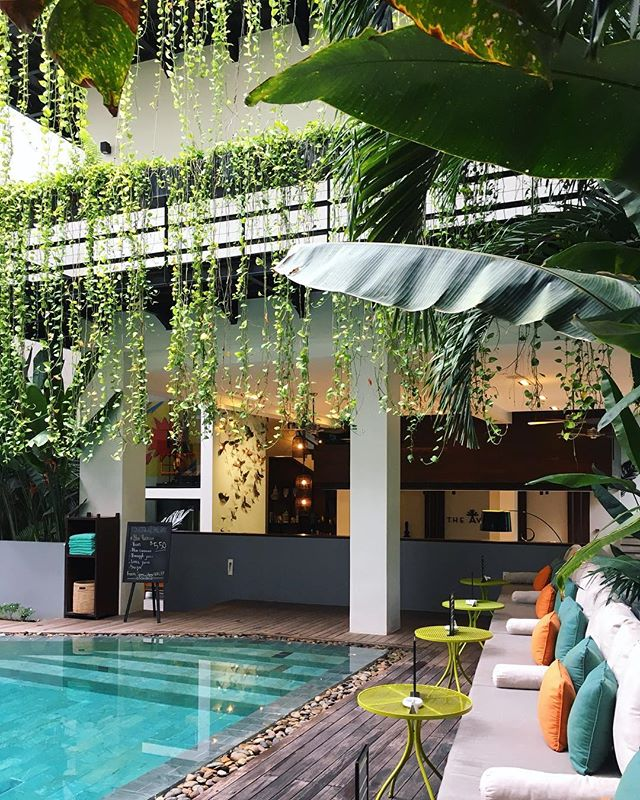 Another view of the lovely @the.aviary.hotel.siemreap #poolside #tropical #colour