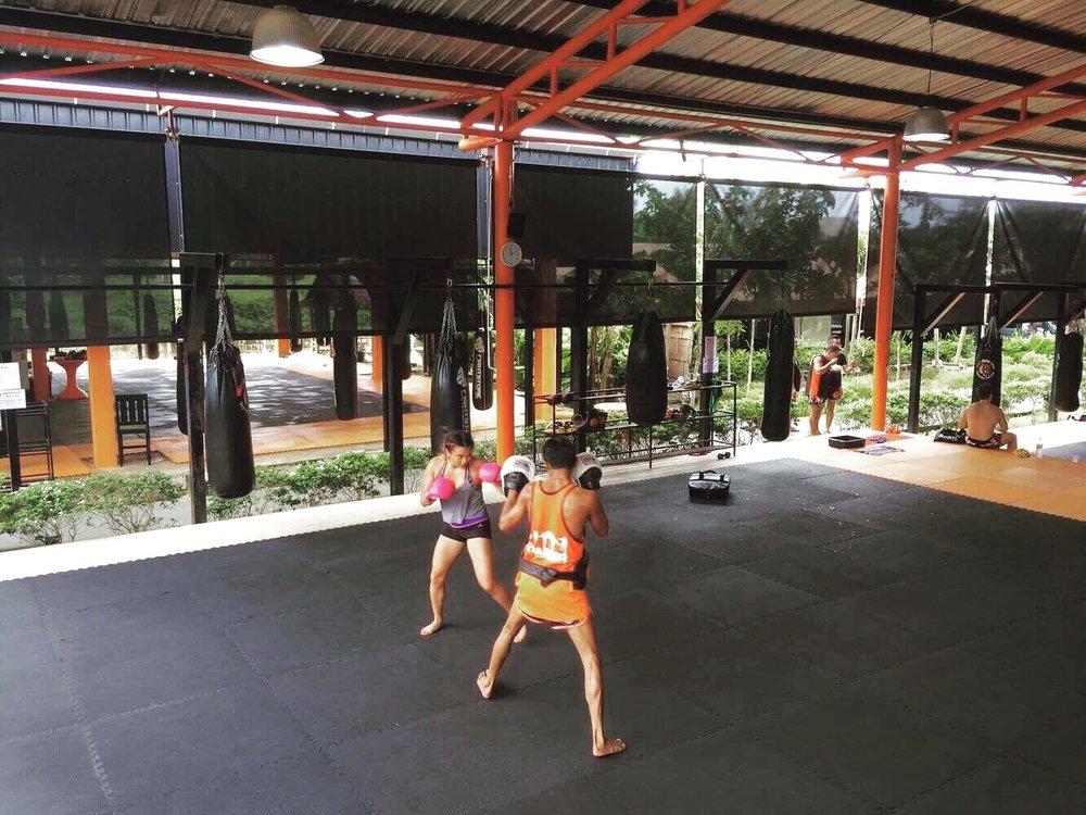 Boxing Training @ Tiger Muay Thai Training Camp