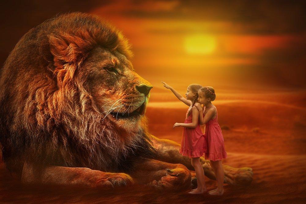lion-3099986_1280.jpg