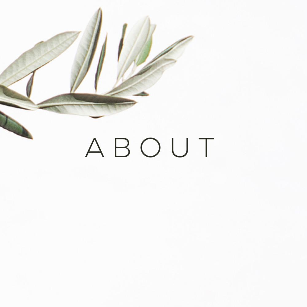 about_jaimi_brooks_therapist_LA.PNG