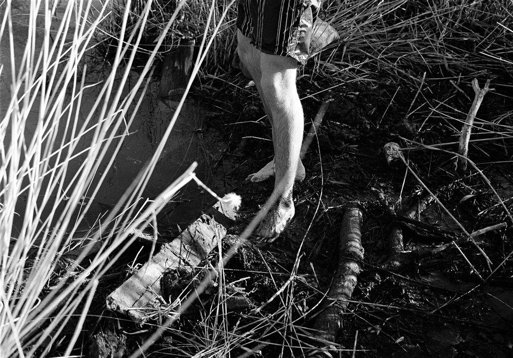 Legs&ReedsSM.jpg