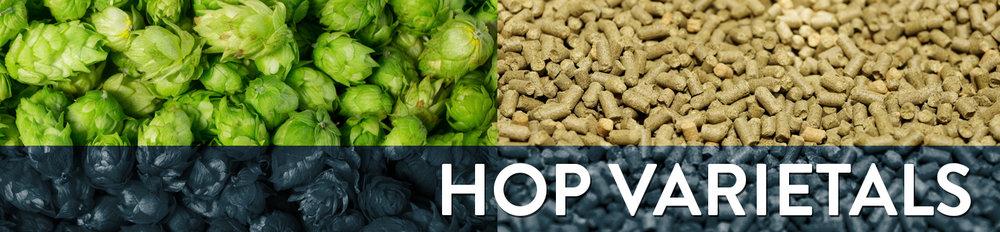 HopsBanner.jpg