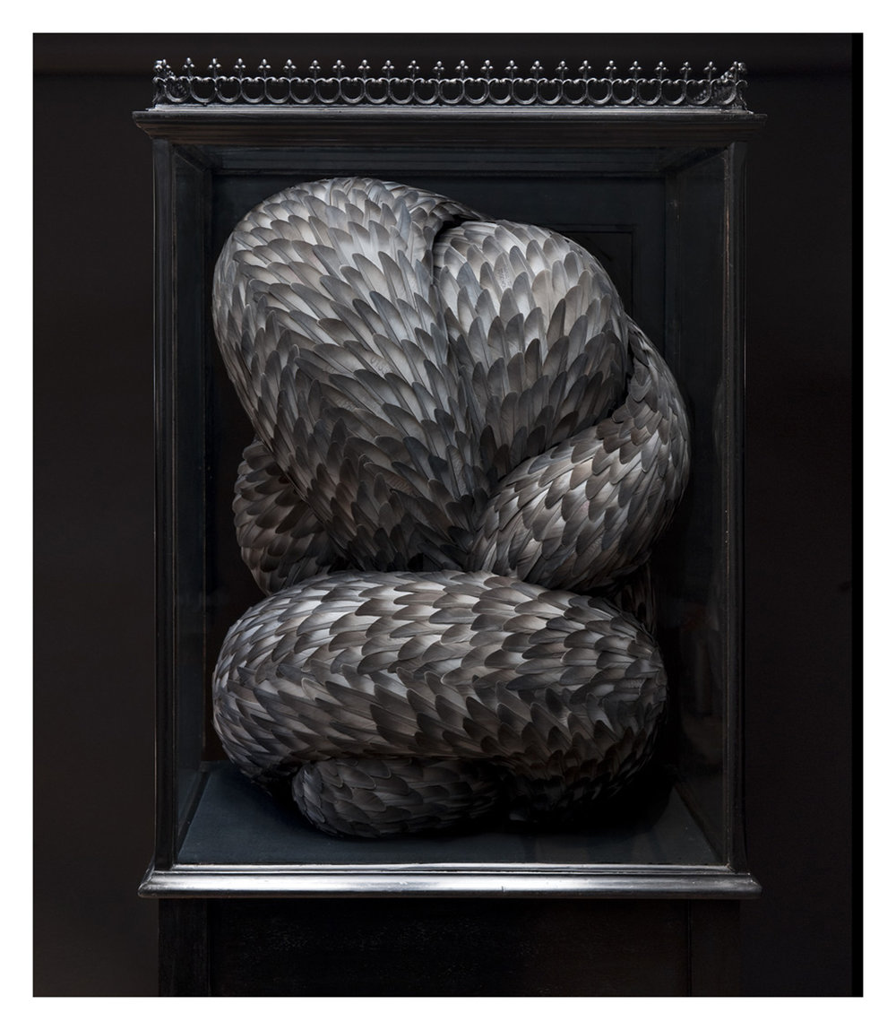 Vice, Mixed media with pigeon feathers in antique cabinet, 2009 (Image: Kate MccGwire)
