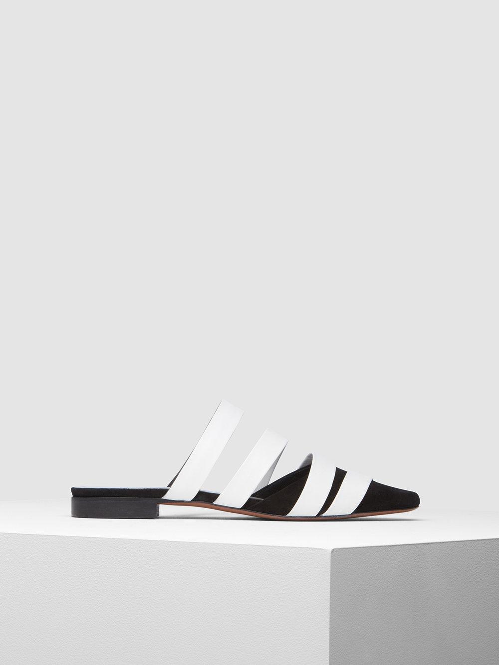 Gomesa white black side.jpg