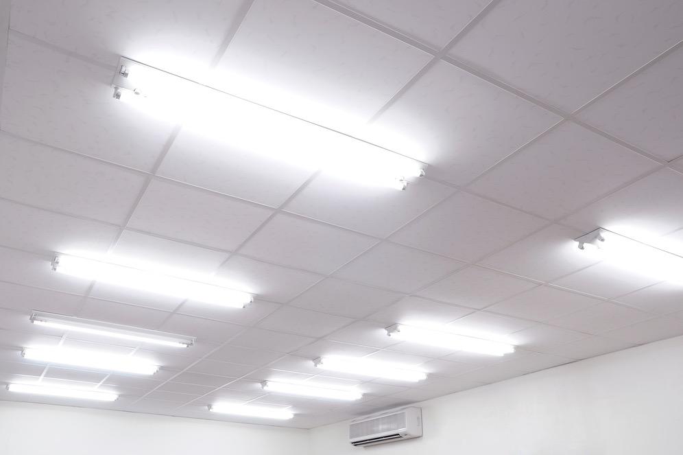 En luces fluorescentes