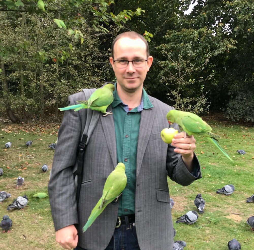 parakeets.jpg