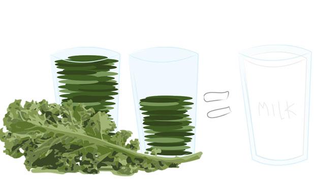 kale-calcium.jpg