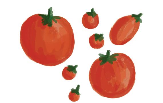 the-vurger-co-vegetable-garden-tomatos.jpg