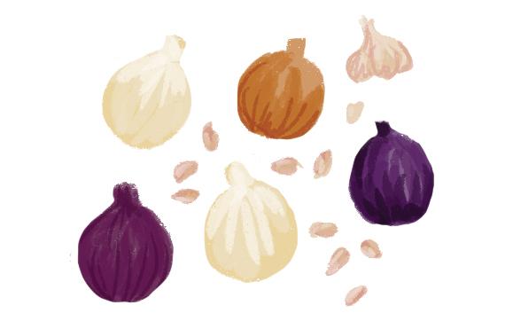 the-vurger-co-vegetable-garden-garlic-onions.jpg