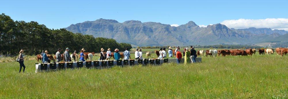 people exploring the FieldTable