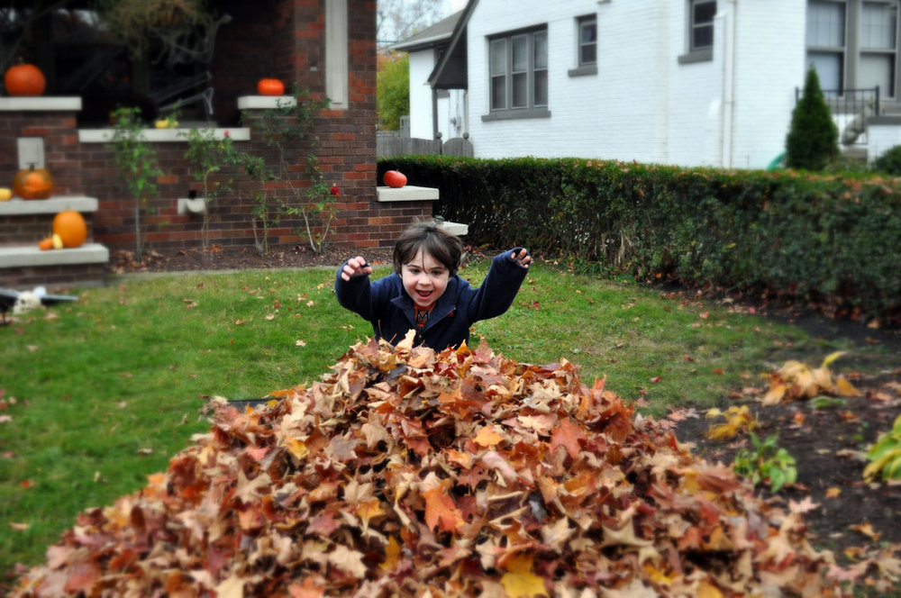 leaf clean up happens after we jump in the leaf piles