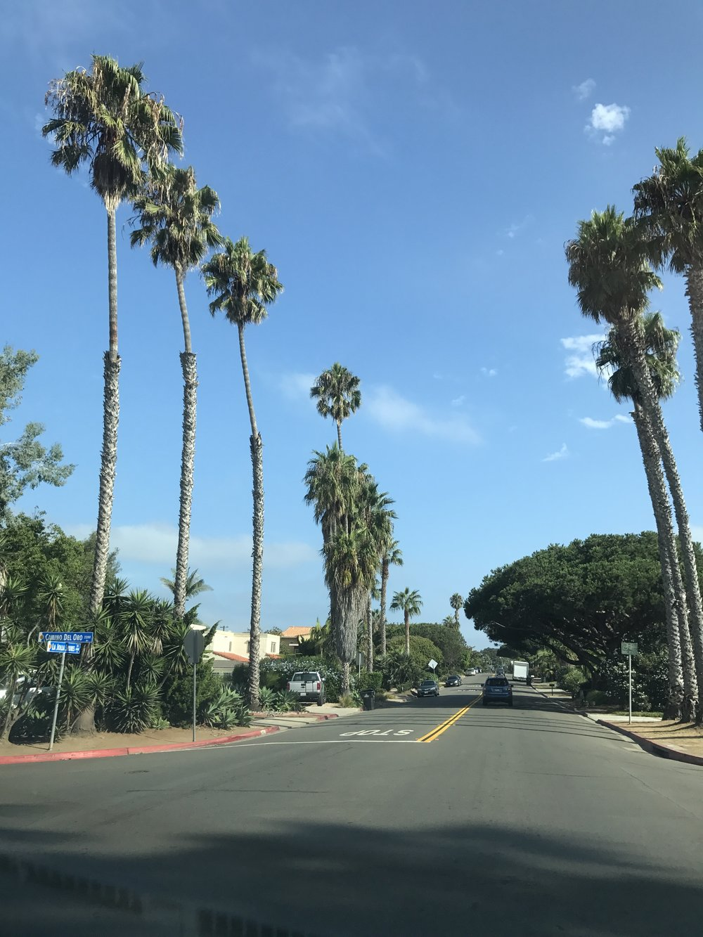 Driving through the beautiful neighborhoods of La Jolla.