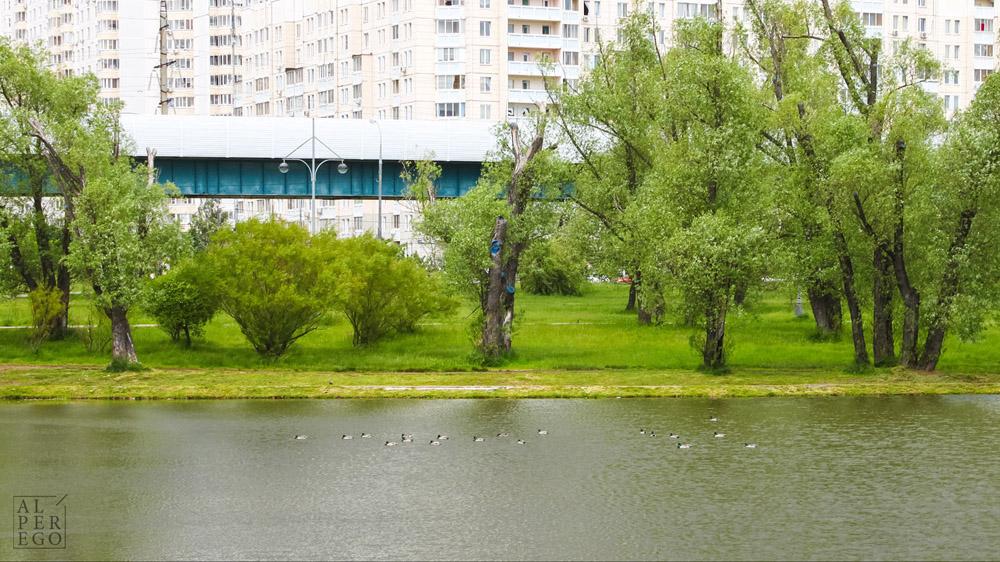 buninskaya-alleya-04 copy.jpg