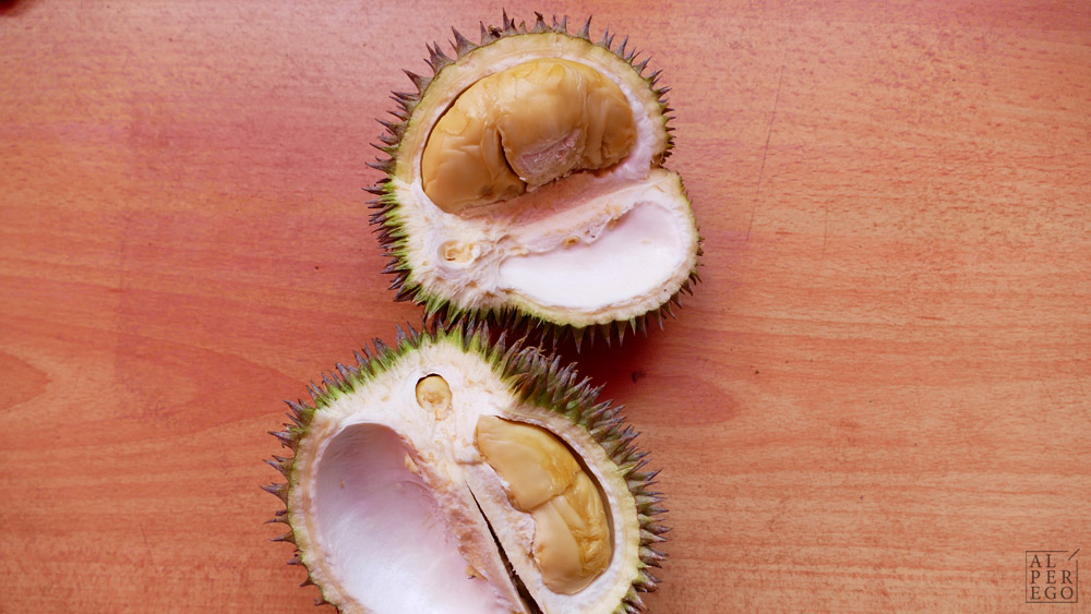 singapore-35-durian.jpg