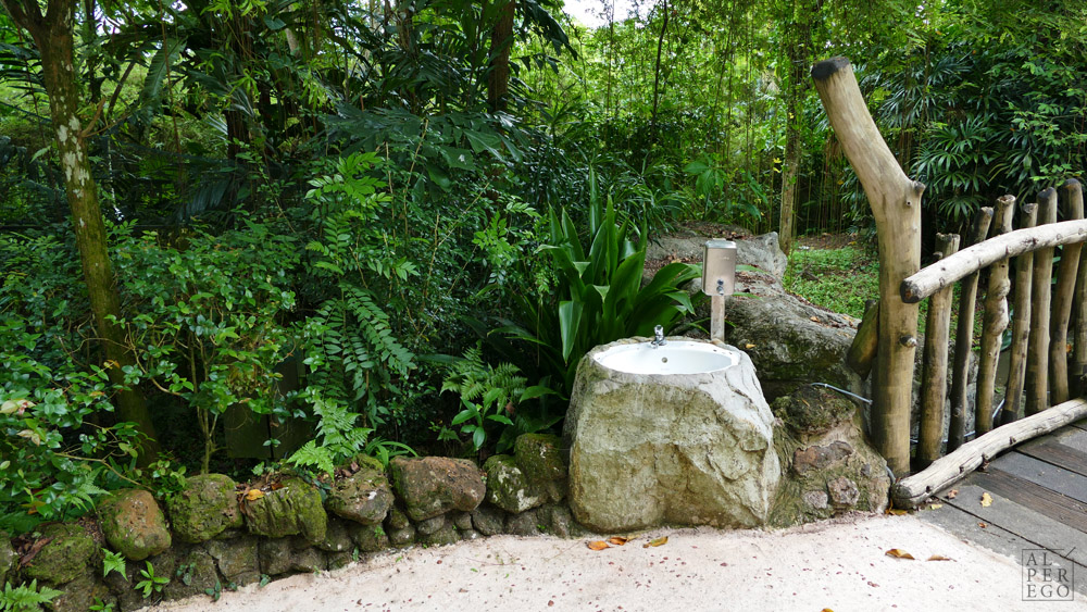 singapore-zoo-28.jpg