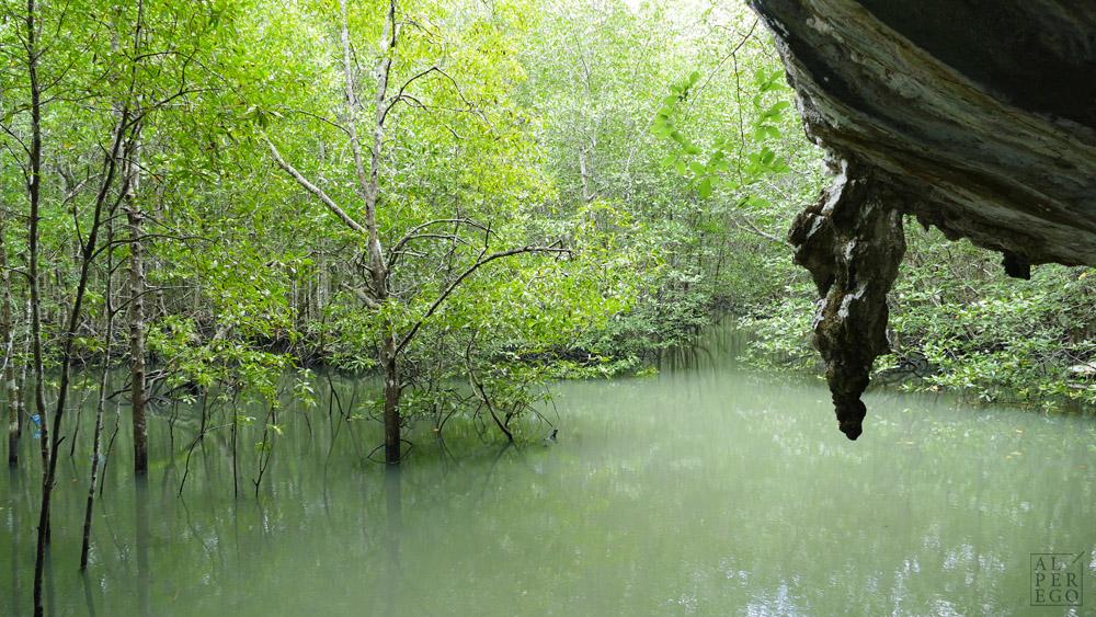 kilim-geoforest-park-langkawi-03.jpg