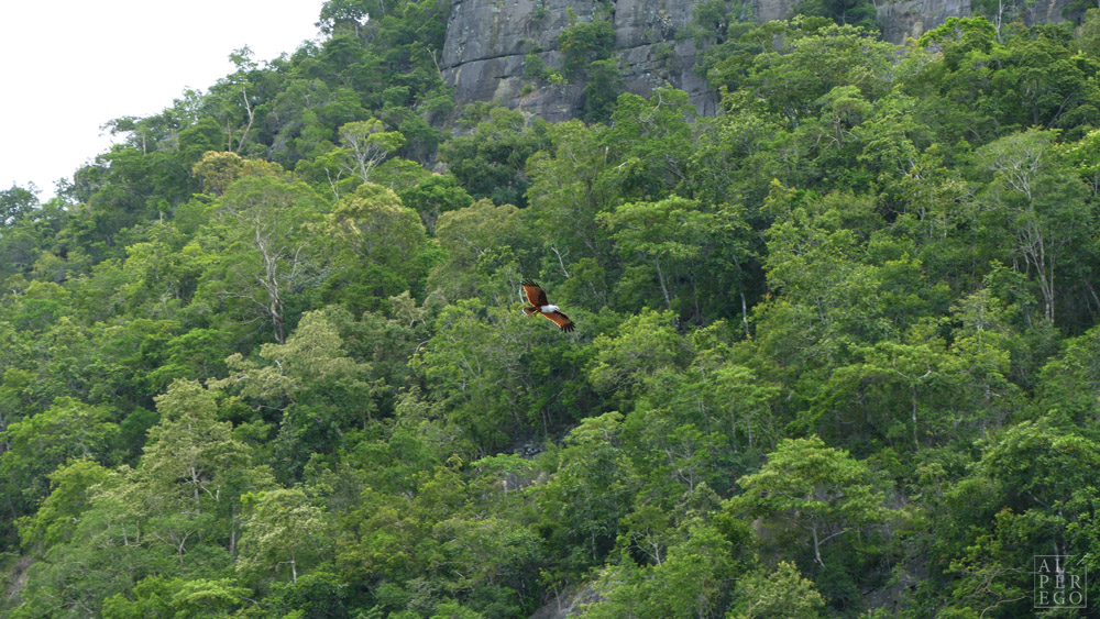 kilim-geoforest-park-langkawi-11.jpg
