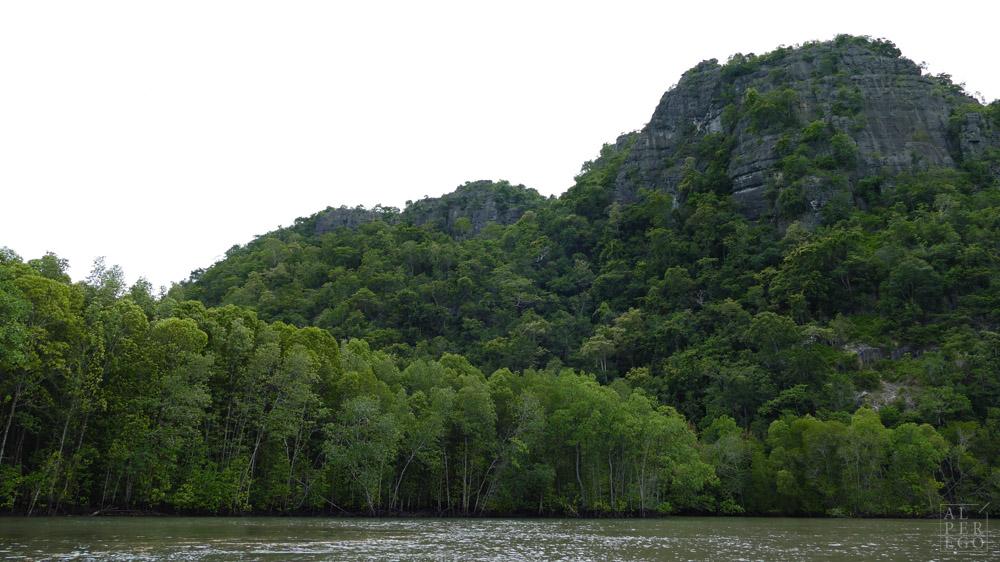 kilim-geoforest-park-langkawi-13.jpg