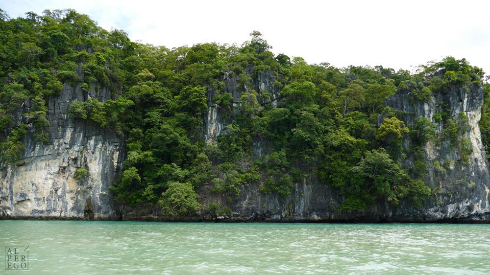 kilim-geoforest-park-langkawi-16.jpg