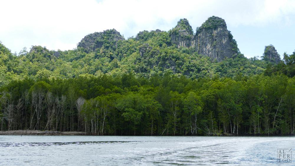 kilim-geoforest-park-langkawi-17.jpg