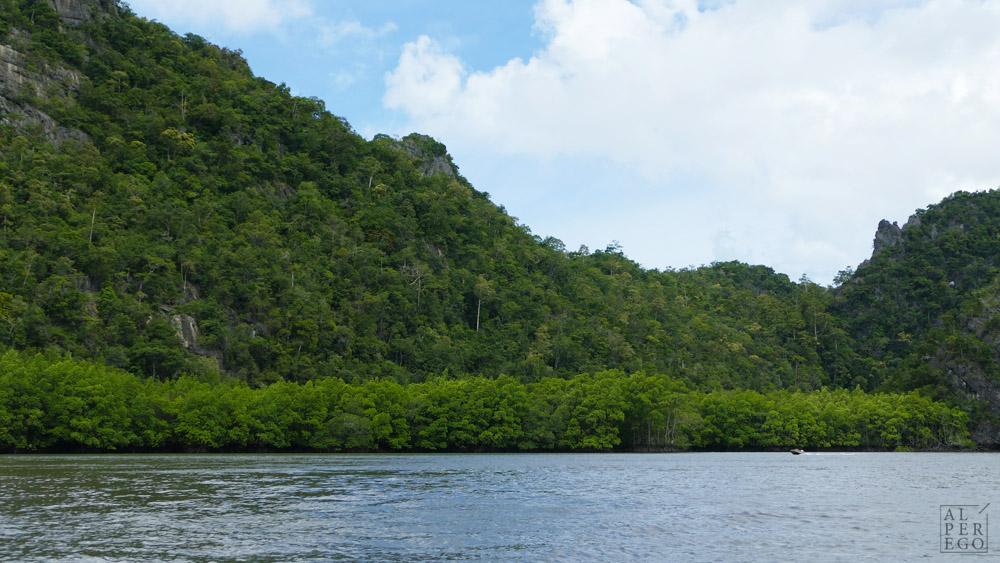 kilim-geoforest-park-langkawi-23.jpg