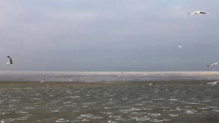 baltic-circle-0706-jurmala-beach.jpg