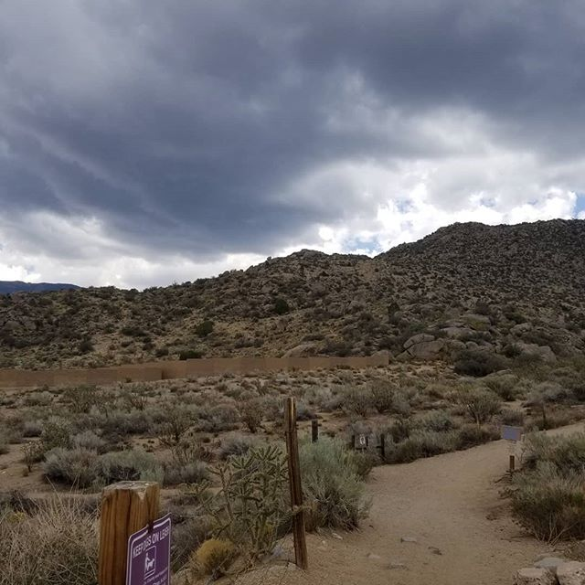 We finished our hike just as the storm arrived. #abq #hikenm #newmexico #summerrain #womenwhohike
