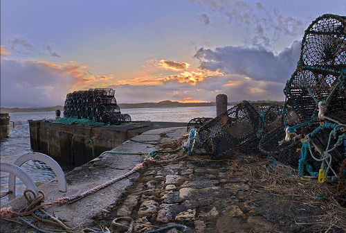 Count lobster pots on the harbour