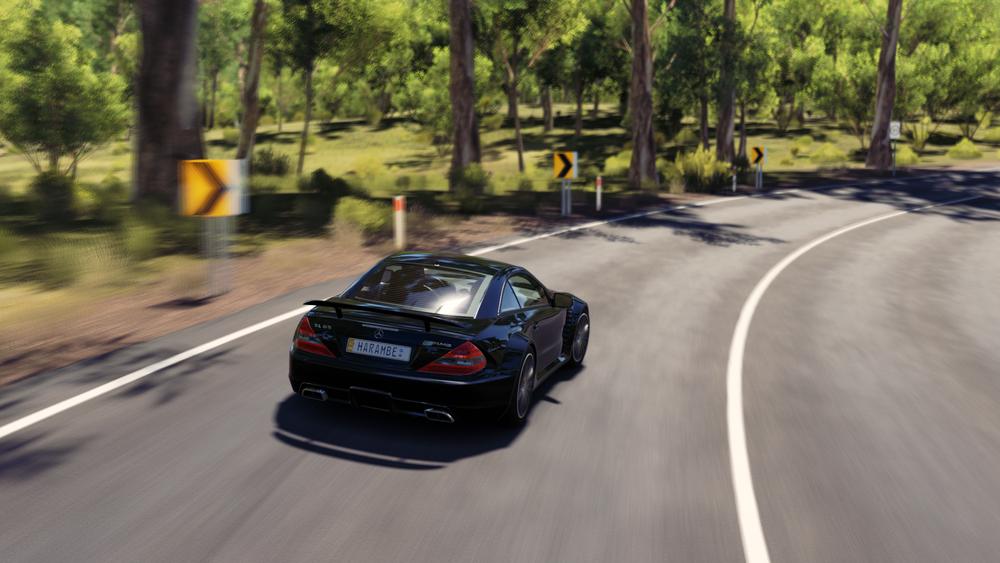 Forza Horizon 3 (41).png