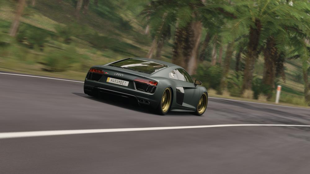 Forza Horizon 3 (42).png