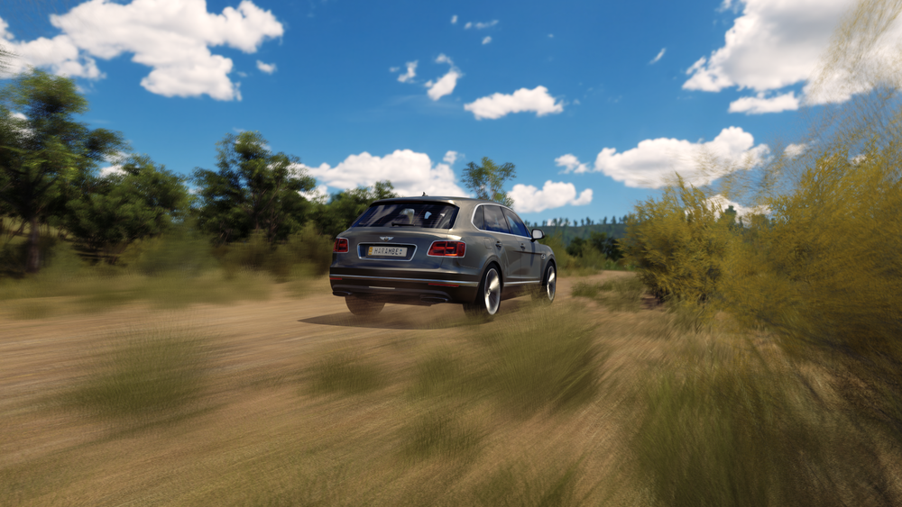 Forza Horizon 3 (110).png