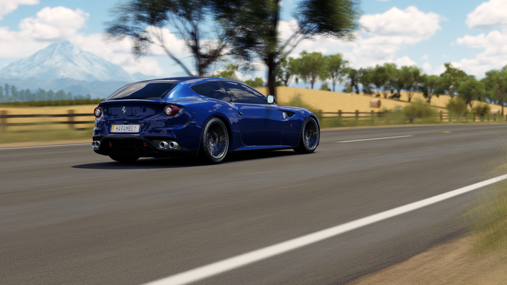 Forza Horizon 3 (123).png