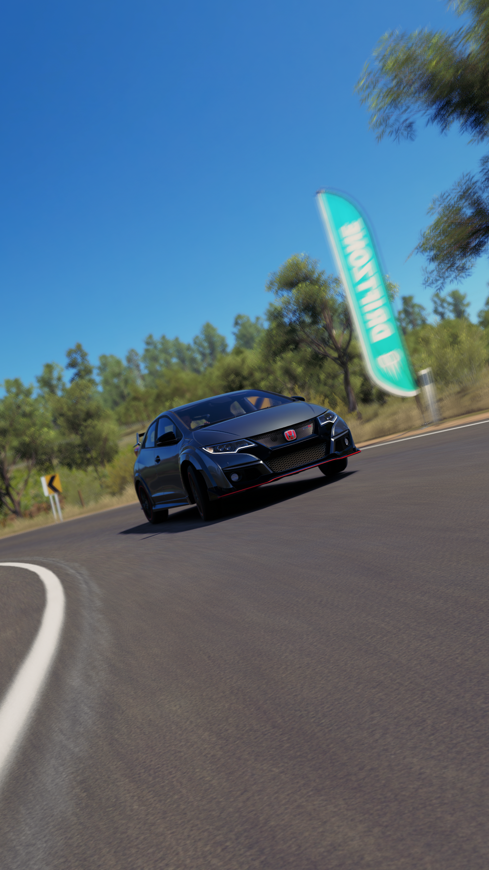 Forza Horizon 3 (132).png