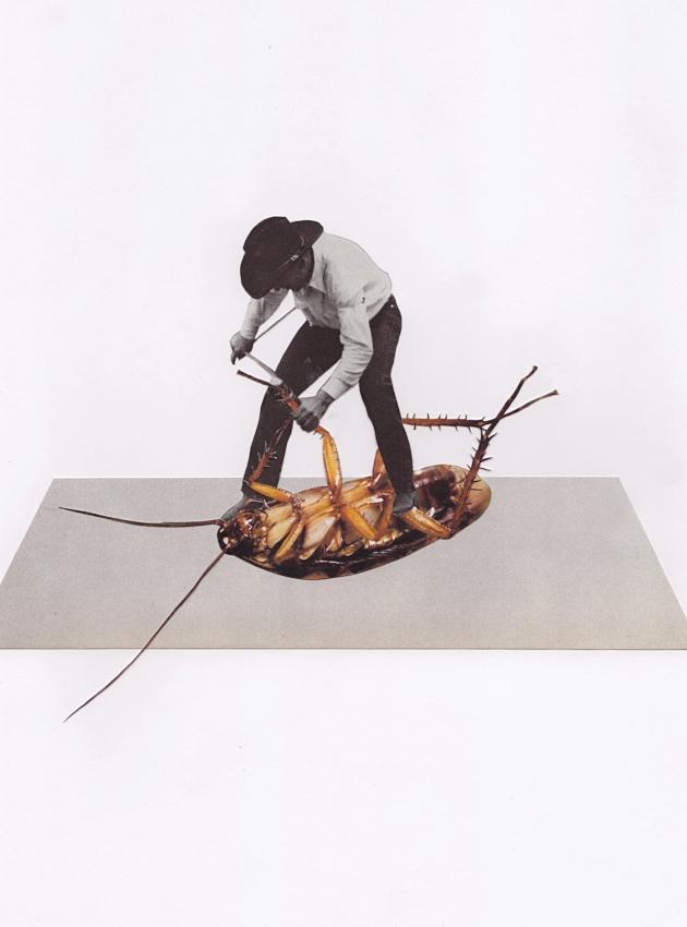 Roach Wrangler