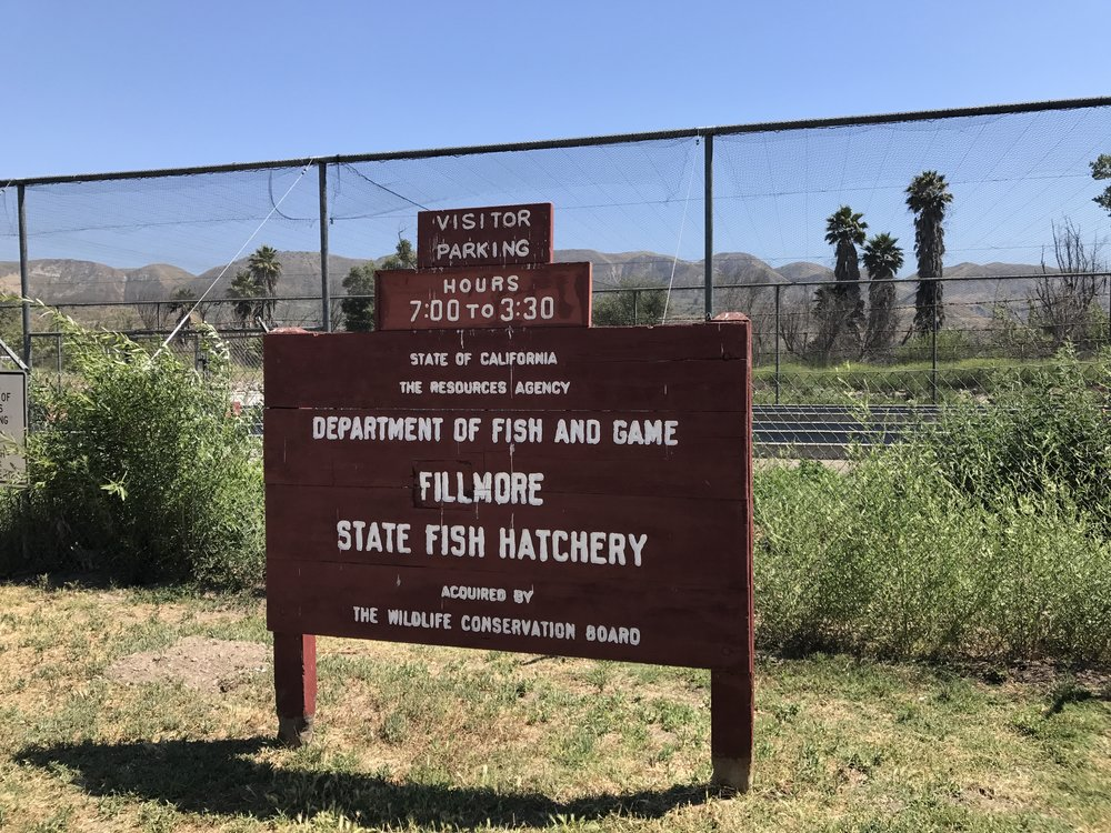 Fish Hatchery In Fillmore 805 Families