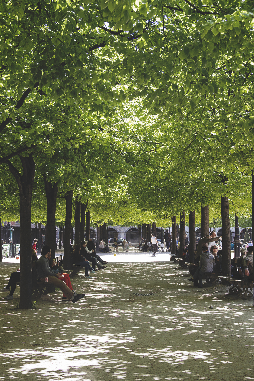 A Californian in Paris: Place des Vosges