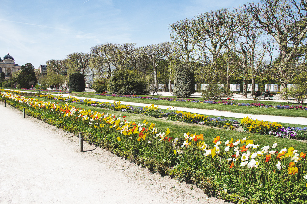 A Californian in Paris: A walk in the Jardin des Plantes