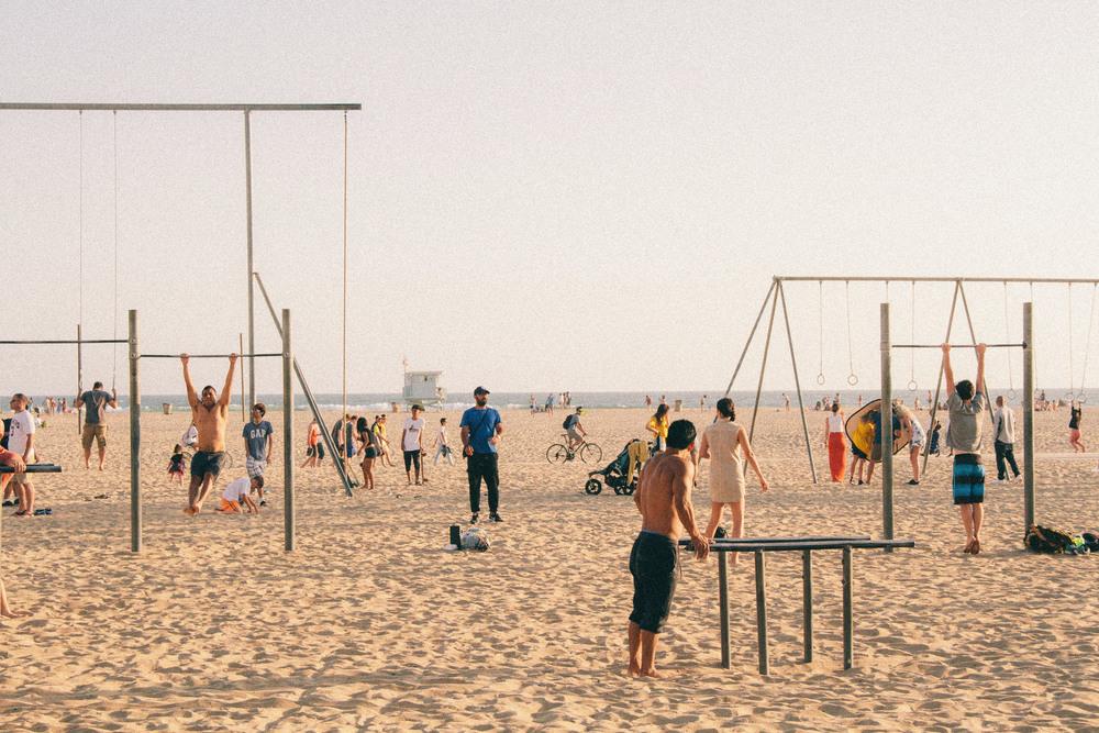 venice-beach-muscle-park.jpg
