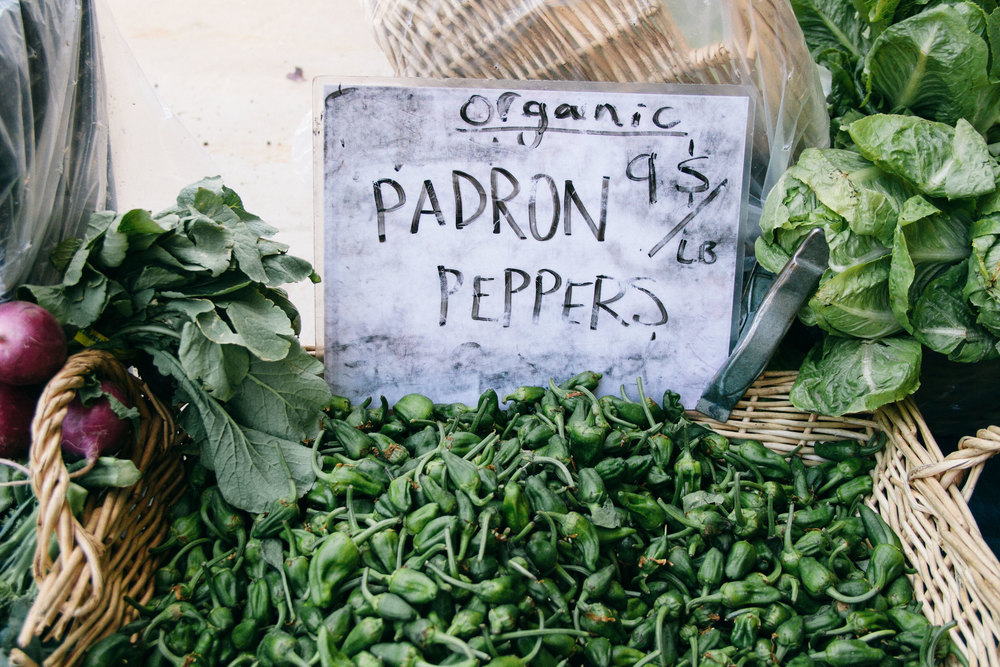 padron-peppers-grand-lake-oakland.jpg