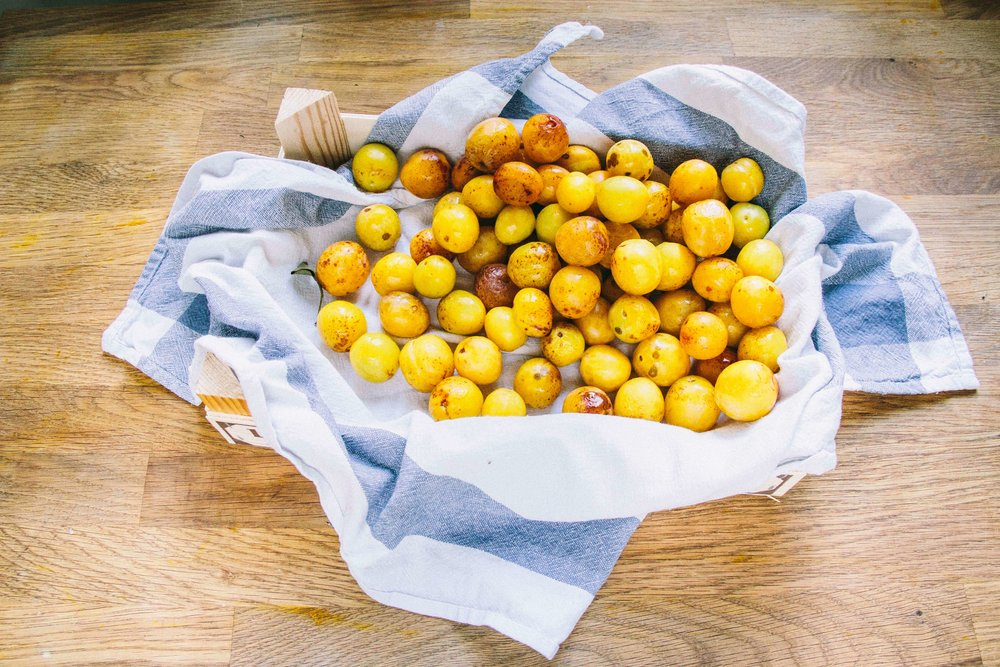 La Petite Californienne: Delicious Mirabelle Plums