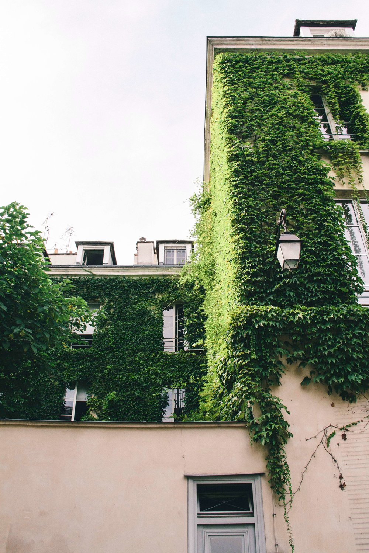 marais-garden.jpg